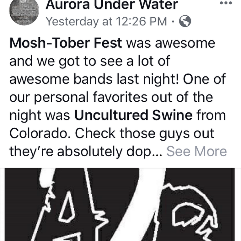 Uncultured Swine Band Three uncultured swine get together and discuss critically acclaimed movies. uncultured swine band