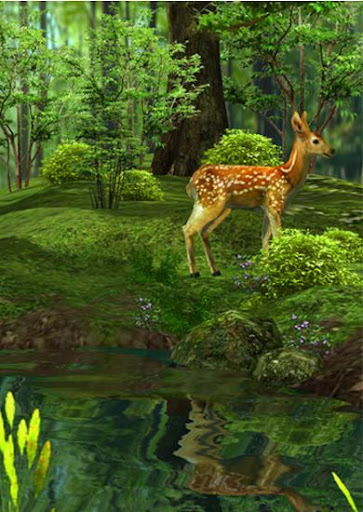 3D Nature Deer Live Wallpaper 1.2 screenshots 2