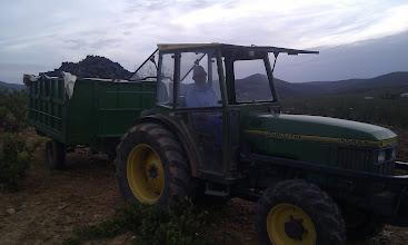 Photo: Remolcada de garnacha  (Fotografía y titulo enviado por Javier Lopez Guillen)