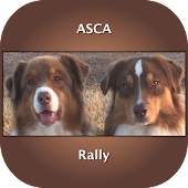 ASCA Rally Dog Obedience