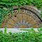 rochester eastman house arch ivy.jpg