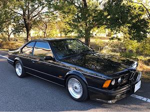 M6 E24 88年式 D車のカスタム事例画像 とありくさんの2020年02月13日07:02の投稿