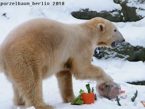 Photo: Die Eistorte muss bewegt werden ;-)