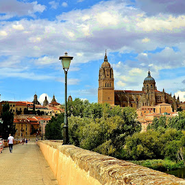 Salamanca by Francis Xavier Camilleri - City,  Street & Park  Historic Districts