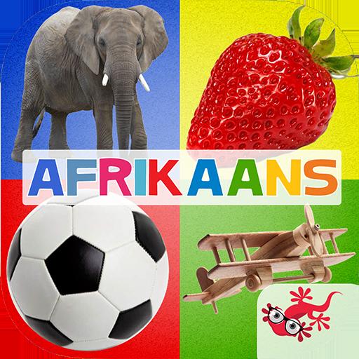 500+ Afrikaans flitskaarte