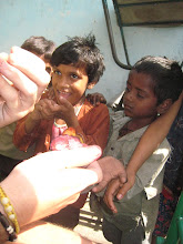 Photo: Kids try a mangosteen we brought from Thailand