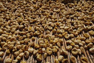 Photo: dried fruits