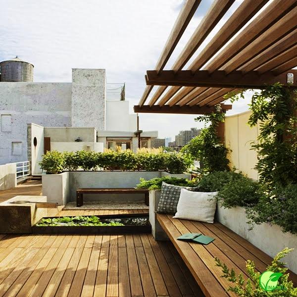 Balcony trồng cây xanh trang tri