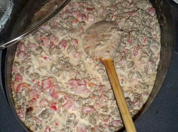 Creamy Spicy Sausage Dip-annette's Recipe