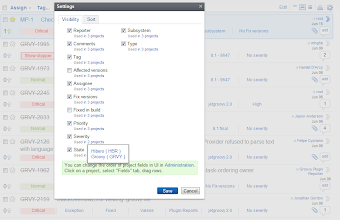 Photo: Issue fields visibility settings. Mark the fields visible on your issues list.