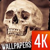 Skull Wallpapers 4k