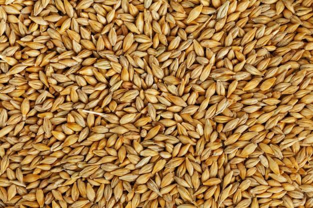 Low Carb Grains