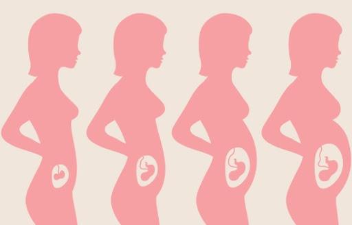 Tìm hiểu về tam cá nguyệt đầu tiên, giai đoạn quan trọng nhất của thai kỳ
