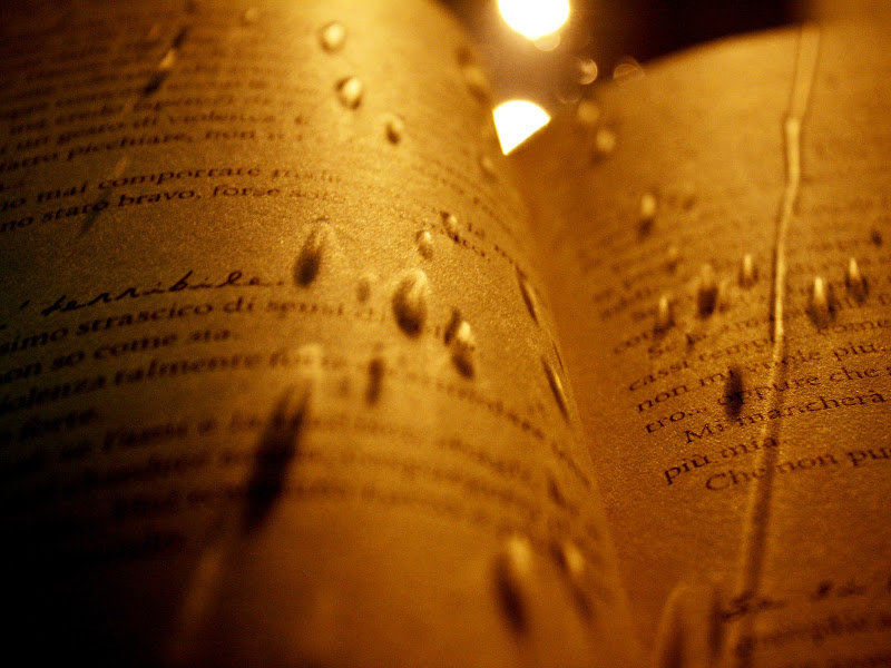 Lettura piovosa  di la_ni_ko