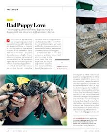 Newsweek – miniaturka zrzutu ekranu