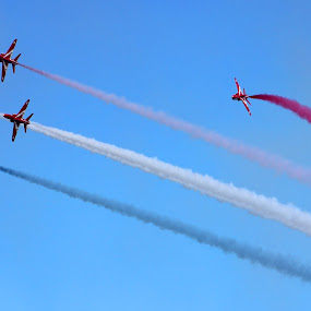 red arrows by Elton Whittaker - Transportation Airplanes (  )