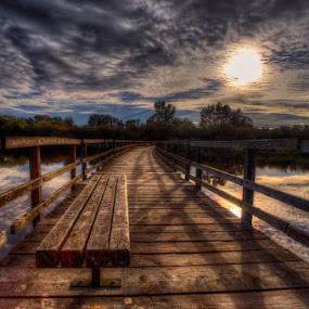 Bridge Bench by Don Guindon - Landscapes Waterscapes ( park, bench, pwcbenches, swan lake, sun )