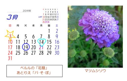 3月の花暦