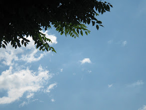 Photo: 記録会です。いい天気