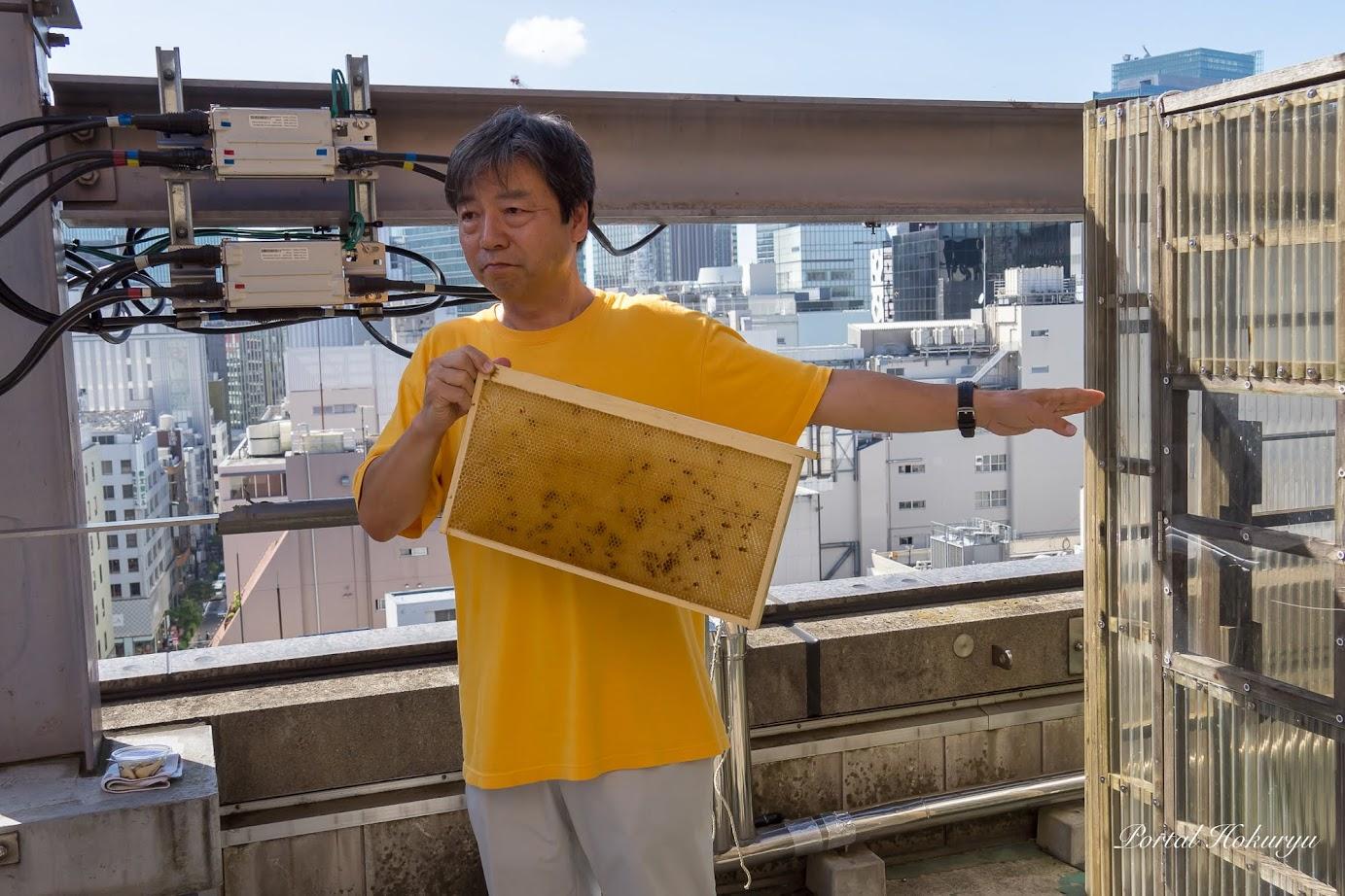 板1枚(裏表)におよそ2,000匹の蜂