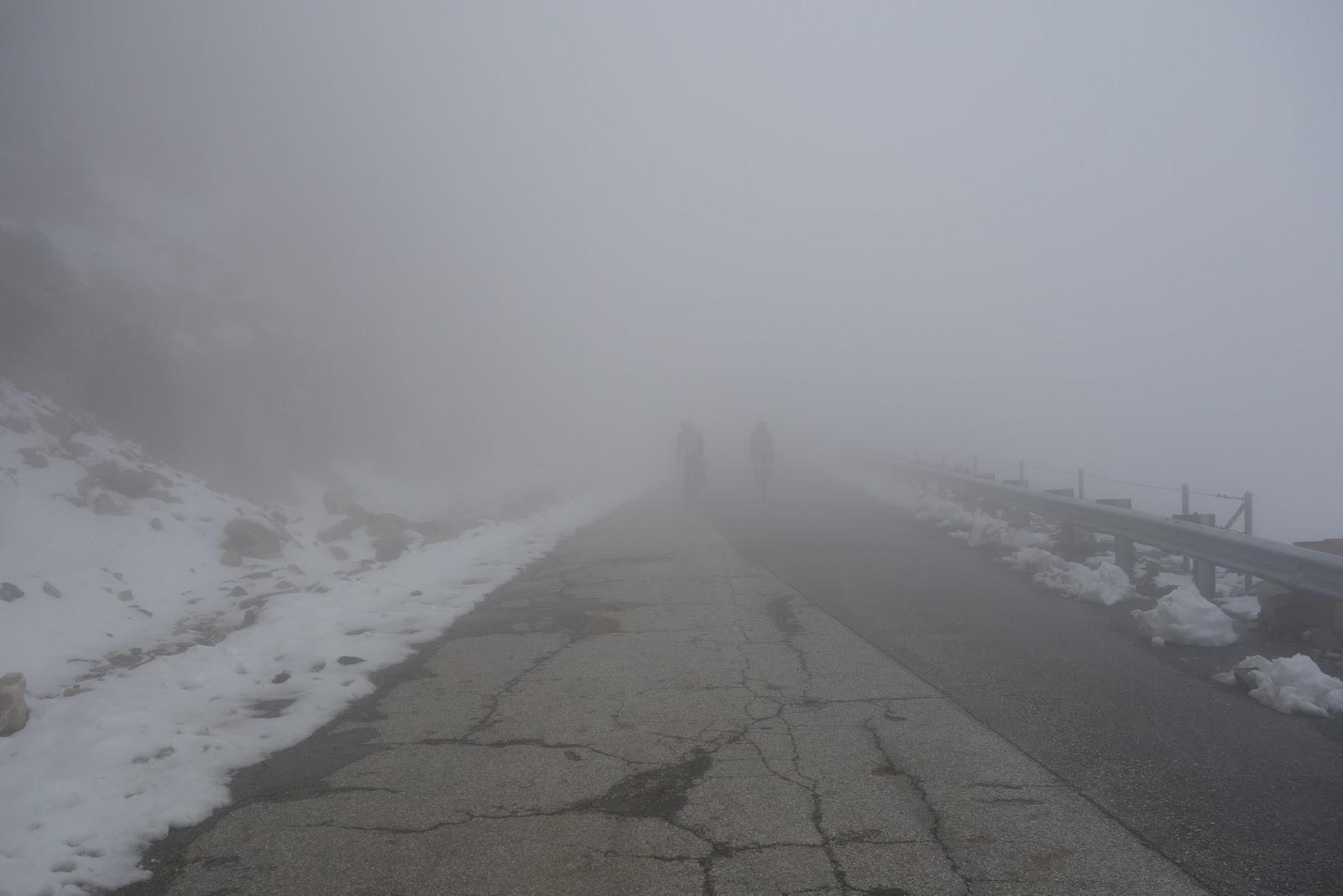 Snow and fog while climbing Dawson Saddle by bike.