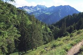 Aussicht vom Weg Zipfelsalpe Hinterstein Allgäu