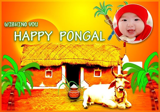 Pongal Photo Greetings 2016