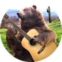 Hợp âm guitar Việt-Viet chord icon
