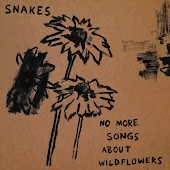 No More Songs About Wildflowers