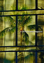Photo: ABSTRACT CATEGORY, FINALIST. Reflection in downtown Honolulu office building. Photo by Kim Reese, Hershey, Pennsylvania.