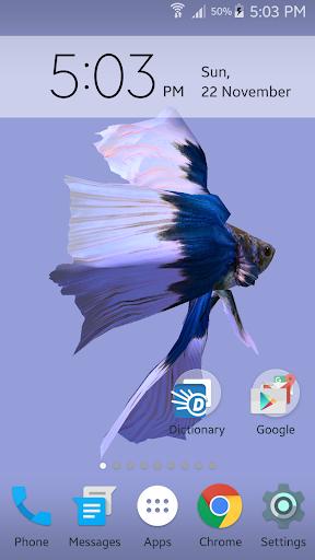 Betta Fish 3D screenshot 4