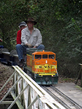 Photo: Doug Blodgett on David Hannah's loco.    SWLS at HALS 2009-1107