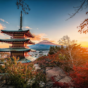 Mt. Fuji with Chureito Pagoda and red leaf in the autumn on sunset at Fujiyoshida, Japan. by Nuttawut Uttamaharach - Buildings & Architecture Places of Worship ( cherry, november, kawaguchiko, japan, nature, arakura, mt, kawaguchi, mount, fujiyoshida, pagoda, red, beautiful, foliage, mountain, japanese, fall, background, chureito, autumn, landmark, day, fuji, landscape )