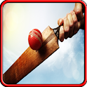 Cricket Gioco 2015 icon