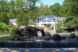 Photo: Seal pond, Central Park Zoo