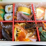 incredible bento box on the Romancecar train towards Hakone in Hakone, Kanagawa, Japan