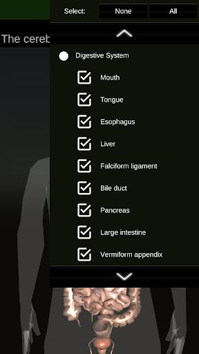 Internal Organs in 3D (Anatomy) 2.0.9 screenshots 8