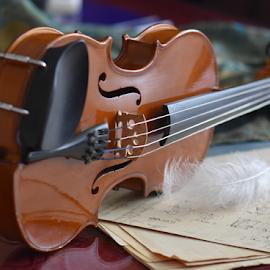 by Biljana Nikolic - Artistic Objects Other Objects ( music, musical instrument, violin, art, play, score, artistic object, strings,  )