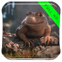 Frog in the Bottle LWP icon
