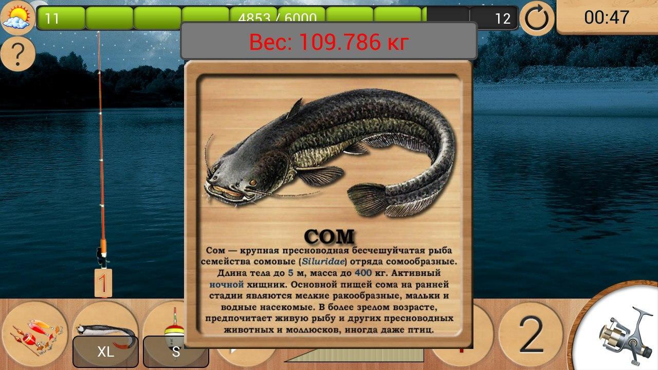 реальная рыбалка толстолобик лесная