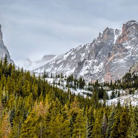 Snowy Peaks by Kimberly Sheppard - Landscapes Mountains & Hills ( mountains, winter, snow, colorado, trees )