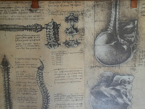 Photo: Leonardo's anatomical sketchbooks at the DaVinci National Museum of Science and Technology