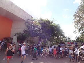 Photo: Fronta k pokladně naChichén Itzá pyramidy. My jsme jí ovšem nečekali, protože jsem si zákeřně objednali lístky od jednoho průvodce, kterej čekal jenom pár minut ve vip frontě.