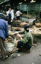 Photo: 11014 上海/自由市場/ジャガイモ