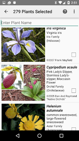 android West Virginia Wildflowers Screenshot 2