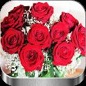 Flores y Rosas Rojas imágenes Gratis icon