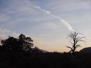 Photo: Sunset over the trail