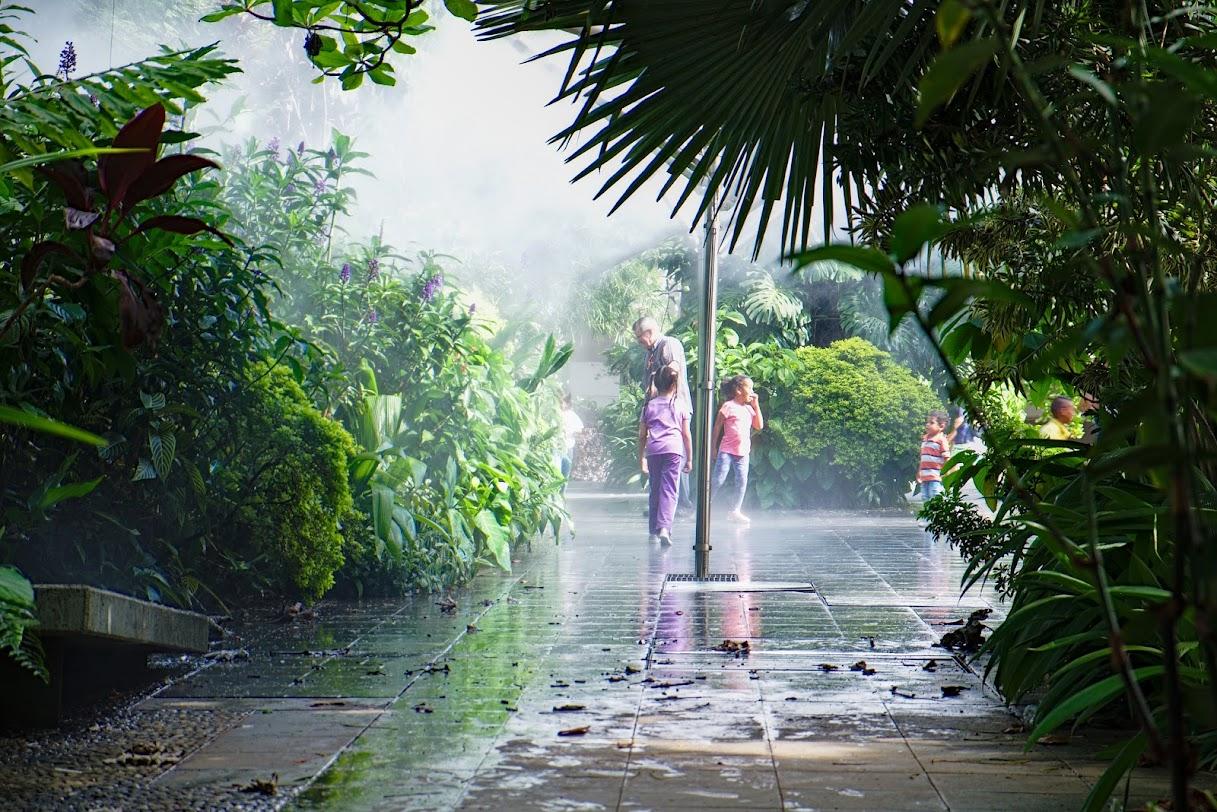 Ogrody Botaniczne, Medellin
