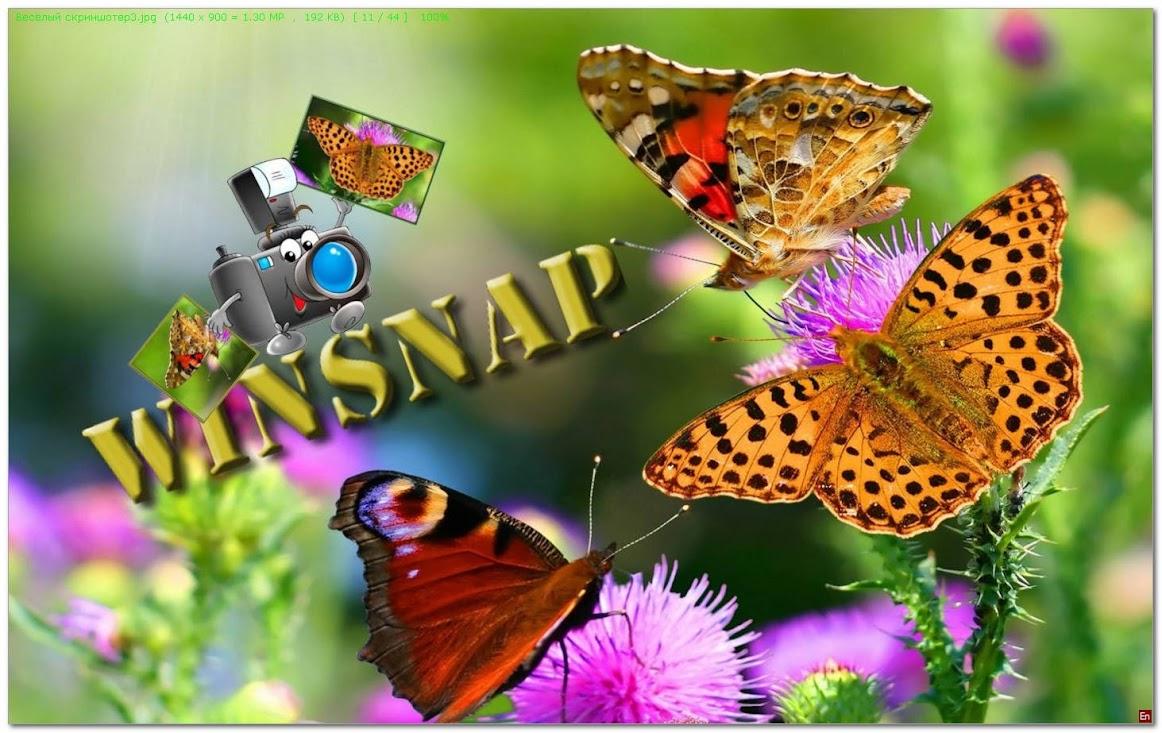 Программа — скриншотер «WinSnap»