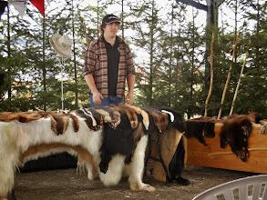 Photo: The fur trader's secret is revealed